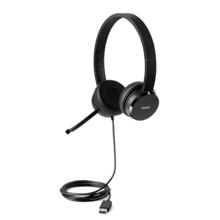 Image of 100 STEREO USB HEADSET